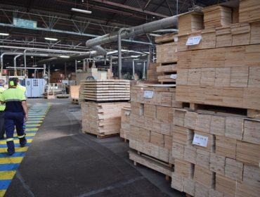 Récord de exportacións da industria forestal no 2018, ralentización no 2019