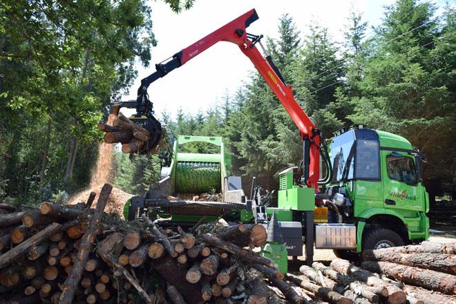 A Xunta prevé que co novo Plan Forestal Galicia duplicará a produción de madeira