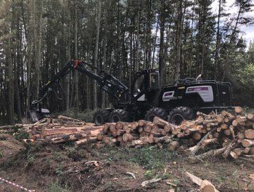 Curso sobre manexo e mantemento de procesadoras forestais