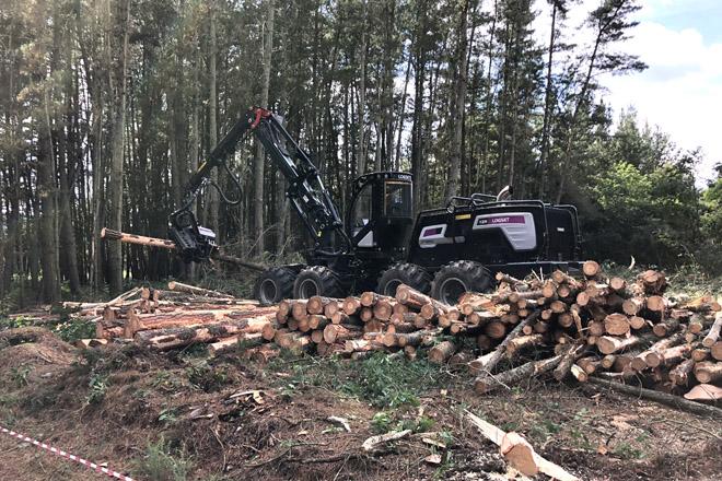 La Delegación del Gobierno aclara que aserraderos, rematantes y viveros forestales pueden mantener la actividad