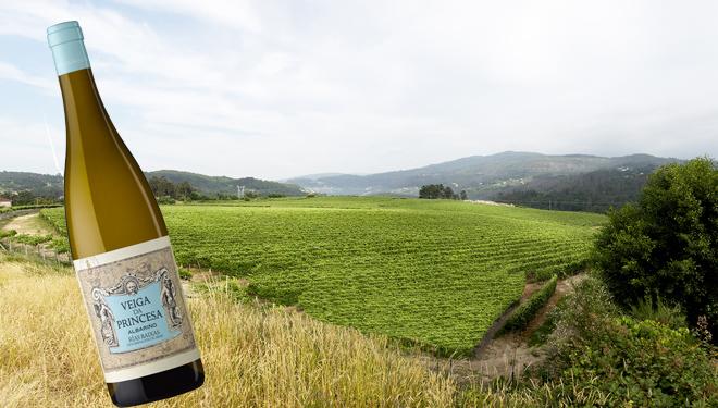Los secretos de Veiga da Princesa, elegido mejor vino blanco de Galicia 2018