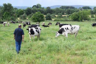 6 medidas para favorecer el relevo generacional en las explotaciones ganaderas