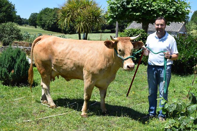 Finca Villadangos: Una ganadería líder en genética de Rubia Gallega