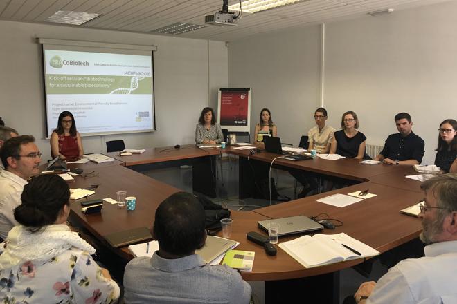 Investigadores galegos traballan na produción de bioadhesivos a partir da madeira
