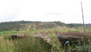 Uno de los manantiales de agua que se vería afectado por la construcción de la balsa.