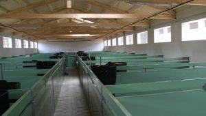 Interior de las nuevas instalaciones.