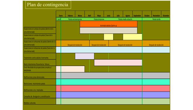 plan-contingencia-Epitrix-