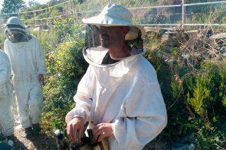 José Antonio, nun dos apiarios xa pechado cun pastor eléctrico.