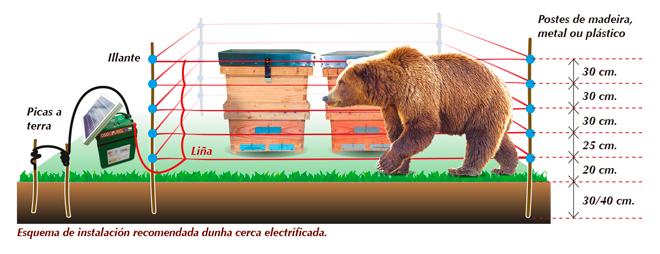 Pastores-electricos-Oso-Courel-Infografia-