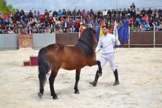 Este domingo se celebra en Teixeiro la Festa do Cabalo con casi 4.000 euros en premios