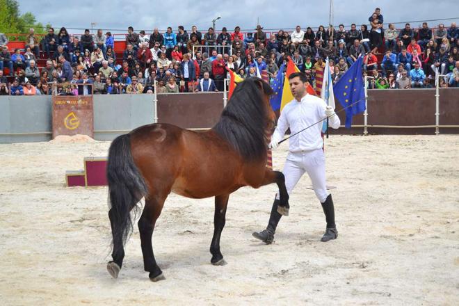 Este domingo celébrase en Teixeiro a Festa do Cabalo con case 4.000 euros en premios