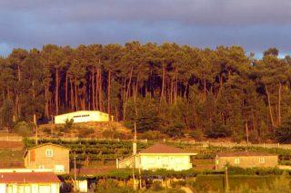 Delimitación das franxas de xestión da biomasa en 152 concellos galegos