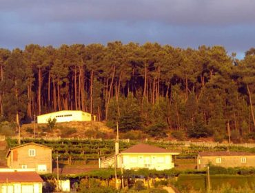 Propostas dos propietarios forestais para revisar a prevención de incendios