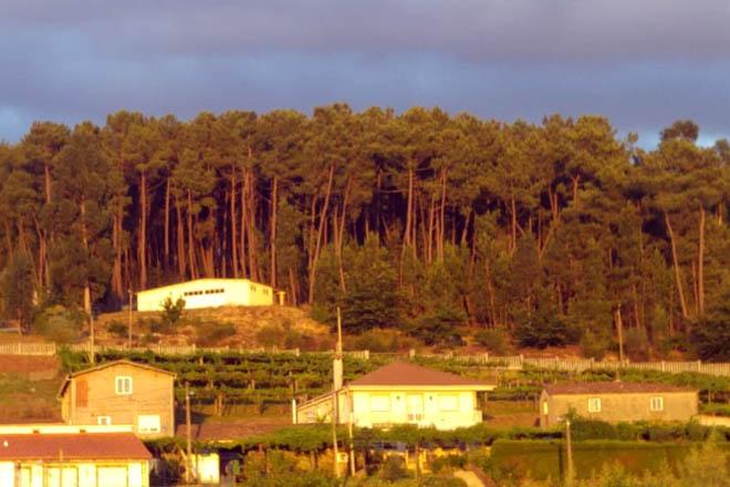 Delimitación de las franjas de gestión de la biomasa en 152 concellos gallegos