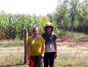 Corea do Sur e Indonesia botan man da universidade galega para mellorar a sustentabilidade do agro