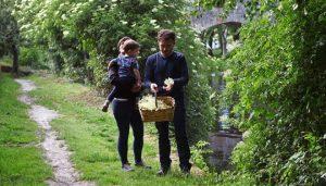 Eva, Nelson y su pequeño Cibrán recolectan flor de saucos silvestres.