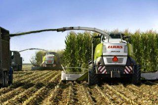 """Vantaxes do sistema de procesado de millo """"Shredlage®"""""""
