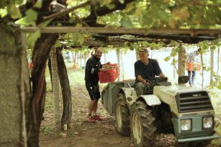 Tráfico inicia unha campaña orientada ós veículos agrícolas