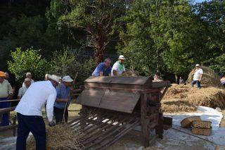 A Pontenova revive la tradición con una nueva edición de la Festa da Malla