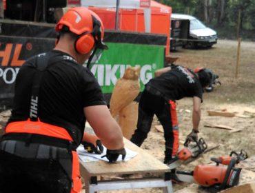Curso de nivel alto de abatemento dirixido de árbores con cable e cabrestante