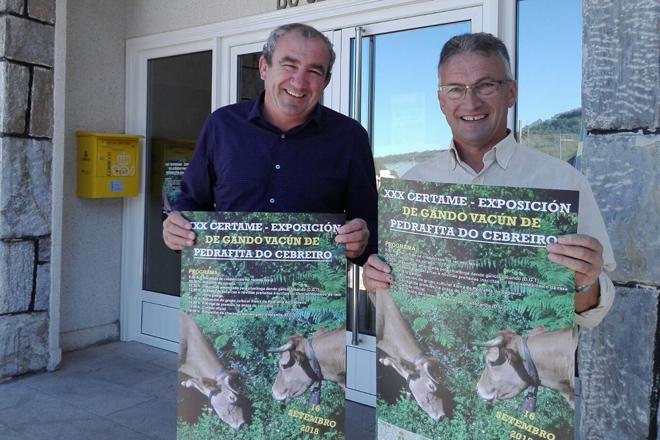 Un cento de animais de Rubia Galega participarán o domingo no Certame de Vacún de Pedrafita