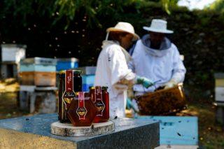 Xornadas técnicas sobre apicultura na Casa do Mel de Goente