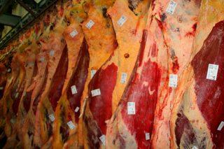 Apoio da Comisión ó almacenamento privado nos sectores de carne e leite