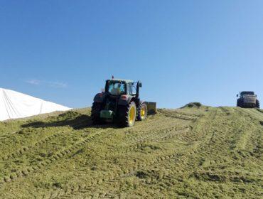 Así trabajan en Os Irmandiños para llenar el mayor silo de maíz de Galicia (Vídeo)