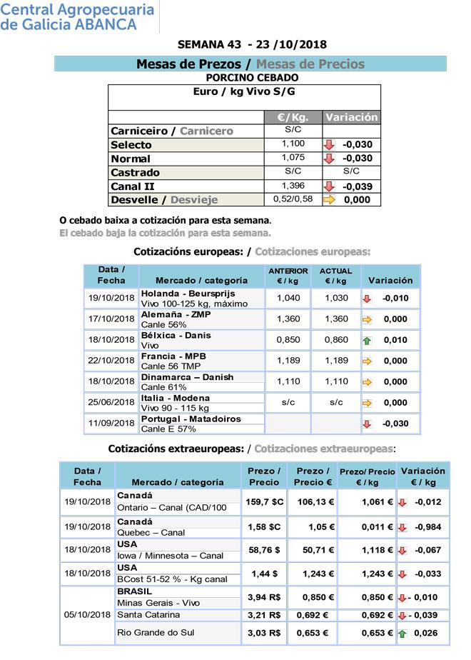 Silleda-Porcino-23_10_2018-2