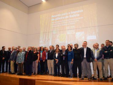 Acordo histórico para recuperar a produción de piñeiro en Galicia