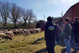 Xornadas de experiencias de emprendedores no rural