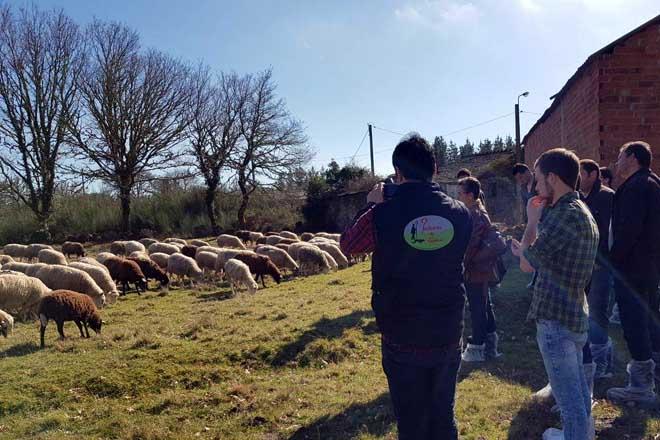 Convocadas las ayudas para estancias formativas de jóvenes agricultores