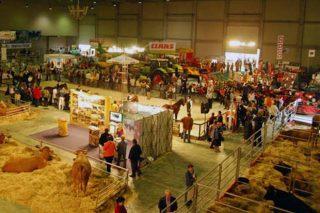 Expolugo reúne esta fin de semana alimentación, maquinaria e unha mostra de razas autóctonas nunha das principais feiras agrogandeiras de Galicia