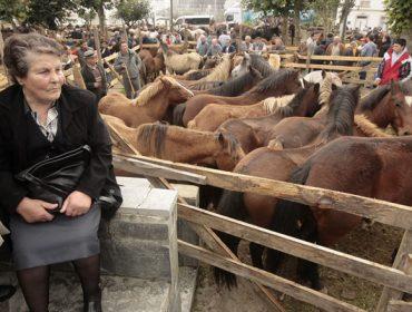 Nueva cita con la feria más antigua de Galicia esta semana en las San Lucas de Mondoñedo