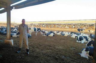 Un galego á fronte dunha das maiores granxas de vacún de leite de Arabia Saudita