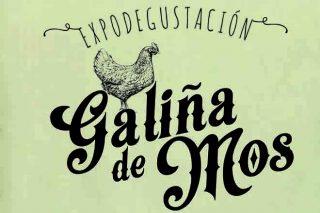 Exaltación de la gallina de Mos el domingo 28 en Castro de Rei