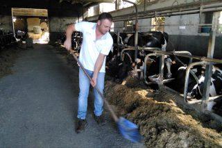 Gandería Quinteiro, como traballa a xenética unha granxa do top-20 galego en morfoloxía
