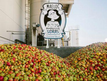 Custom Drinks comprou este ano 2,5 millóns de quilos de mazá galega