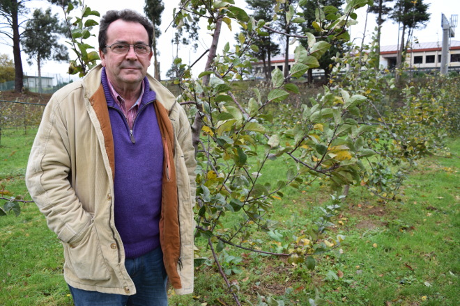 """""""A mazá de sidra está en auxe e pode ser un bo complemento á renda de moita xente"""""""
