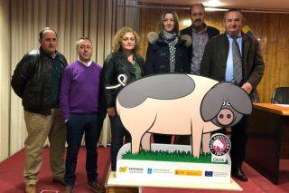 A Deputación de Lugo colaborará con ASOPORCEL para facilitar os programas sanitarios das explotacións