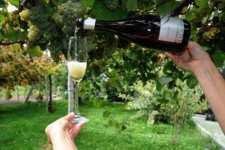 Fin de semana para desfrutar dos viños espumosos galegos en Salvaterra