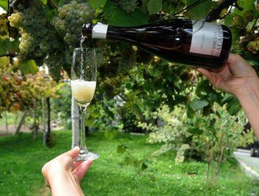 Fin de semana para disfrutar de los vinos espumosos gallegos en Salvaterra