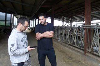 Uniform-App, unha ferramenta útil para gandeiros e veterinarios