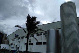 Os retos de producir leite a 1.500 quilómetros do gran consumo