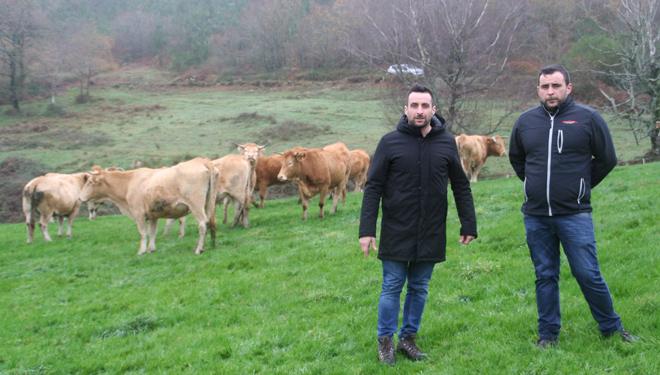 """""""Para que a gandería sexa viable, complementamos a produción de carne coa recría para vida """""""