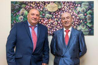 COREN compra 4,5 millóns de quilos de castaña galega para alimentar aos porcos da gama Selecta