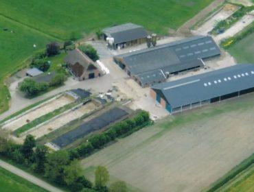Como reduce as emisións de amoníaco unha granxa de Holanda?