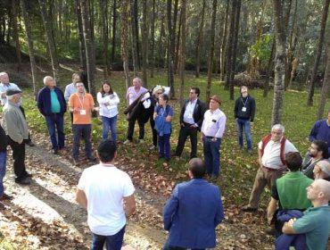 O proxecto Forest-in organizará en Galicia un curso para xestores forestais