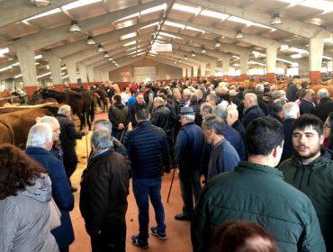 Critican o colapso da Oficina Agraria de Teixeiro