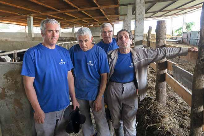 Catro dos traballadores que atenden a granxa. De esquerda a dereita: José Bouza, Manuel Doade, José Martínez e Amancio Díaz
